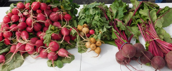 Radishes_and_Beets