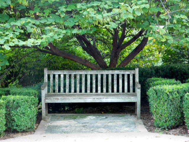 Loose Park bench