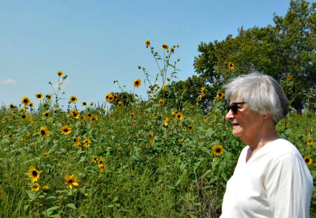Sunflower field and Mom