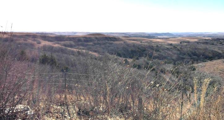Prairie 5