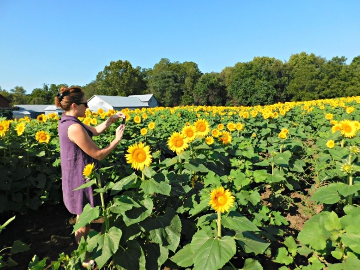sunflowers-and-jen-2